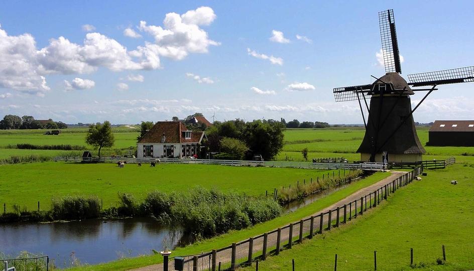 praca Holandia od zaraz